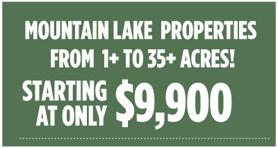 Lake and Mountain Land Liquidation Sale